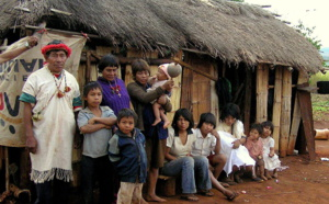 Two books about the Guaranies describe the experiences of these indigenous people
